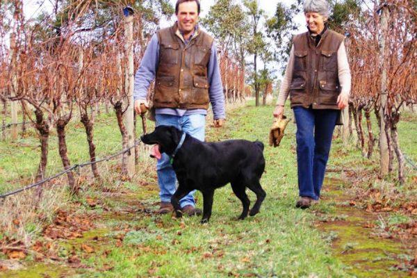 Di, Hew & Solly in the vineyard